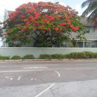 Bahamas Film Location Ocean Properties 13 Property Rental Locations